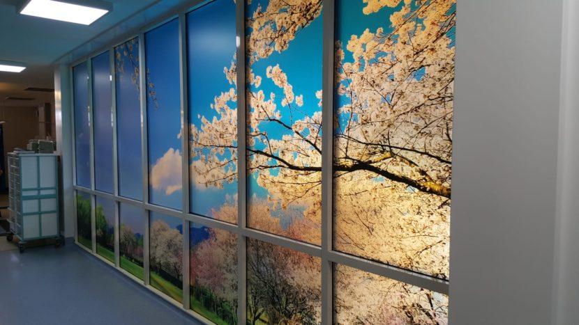 Large pink blossom tree design lighting up a room