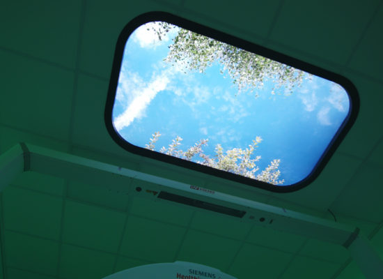 Green foliage sky ceiling panel