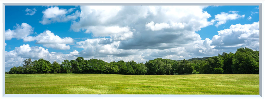 Countryside image of green field and trees under a blue sky with clouds, for a fake window