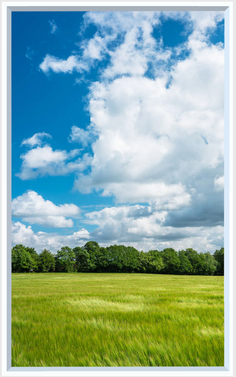 Clouds in a blue sky over green field and trees, a design for a artificial window for a dark room