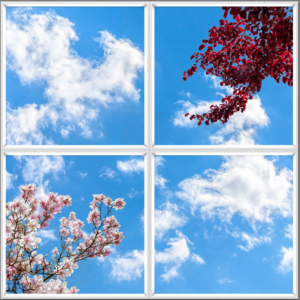 Blue sky ceiling UK with realistic flowers