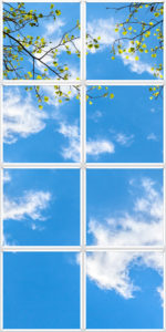 Luminous sky ceiling design with sparse leaves on twigs in front of wispy clouds