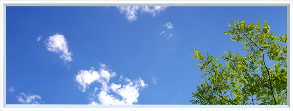 Wall art design with blue sky, clouds and green foliage