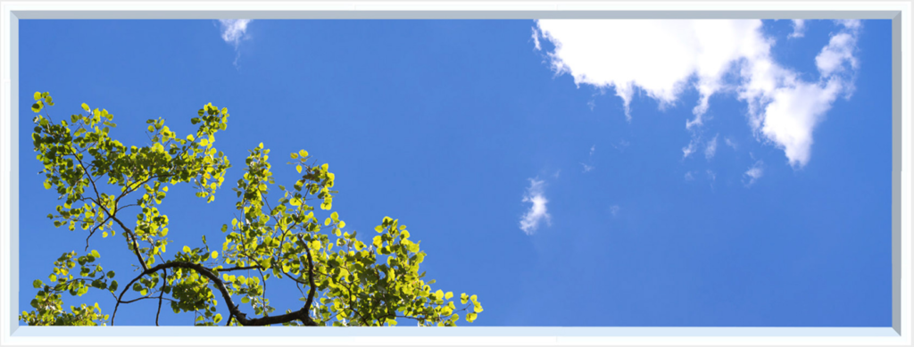 Wall feature with sky, clouds and green leaves on twigs