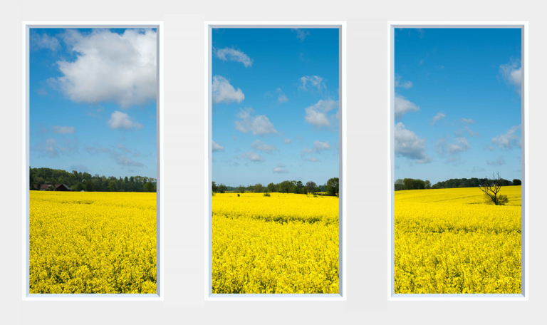 Decorative faux windows with a yellow field and trees under a blue sky with clouds